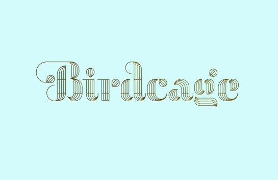 frame_birdcage_logo